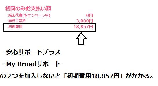 オプション2つを加入しないと「初期費用18,857円」がかかる。.png