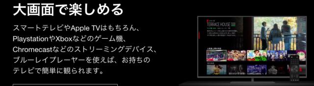 Netflixテレビ.png